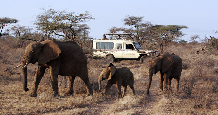 _Micato_Safaris_-_Vehicle_with_elephants