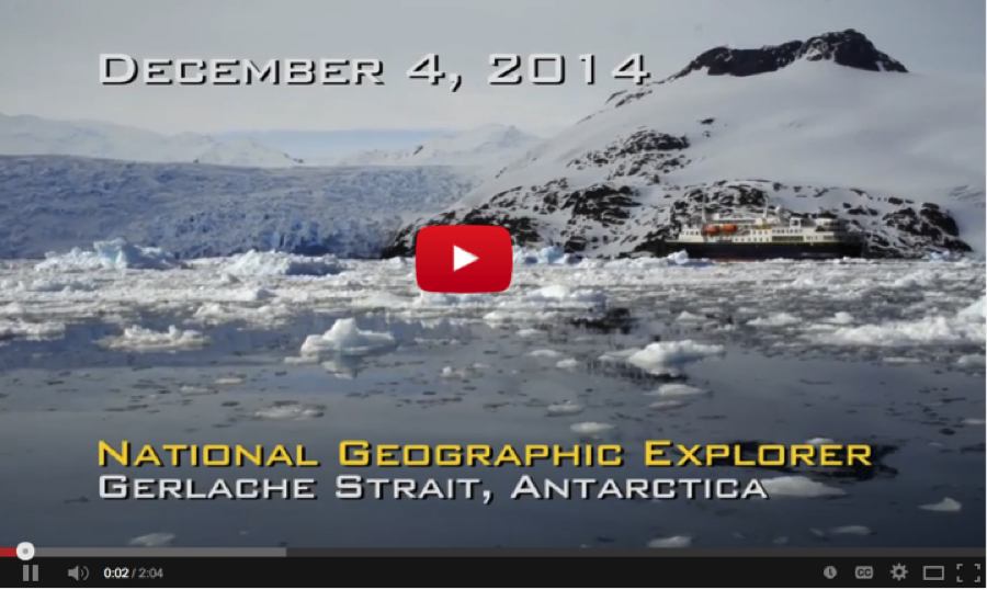 lindblad expeditions antarctica orcas hunt minke whale