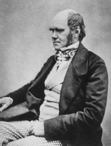 Charles Darwin, from The Life and Letters of Charles Darwin (1887)