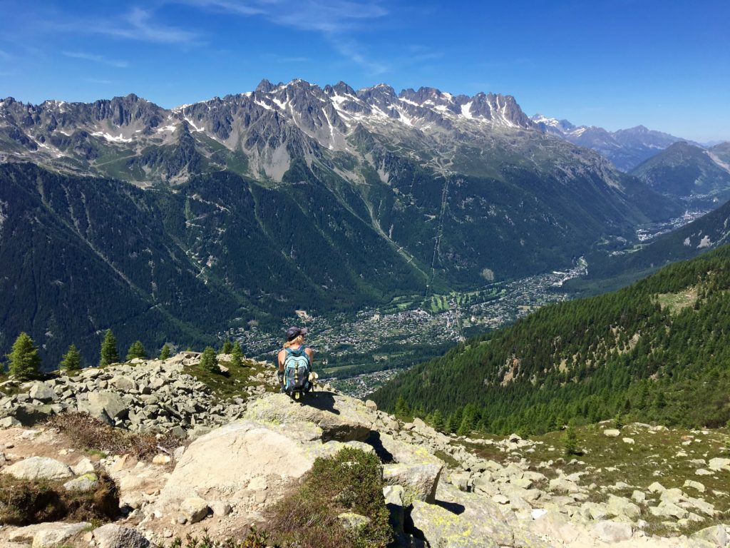 Chamonix Valley from Plan d'Aiguille